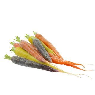 Karotten-Abo S