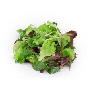 Salat-Abo L