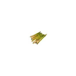 Spargeln grün (sporadisch)