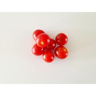 Cherry-Tomaten rot offen