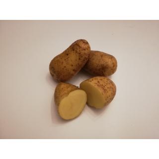 Kartoffeln Charlotte (festkochend)