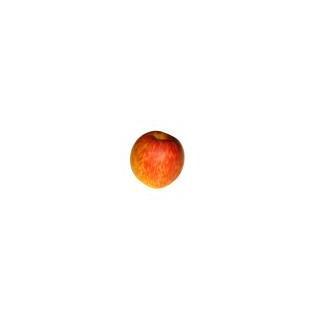 Äpfel Braeburn (süss/herb)