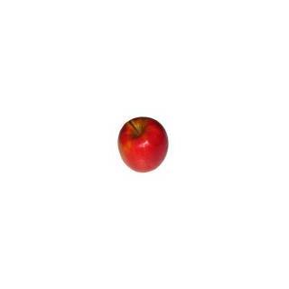 Äpfel Idared (knackig süss)