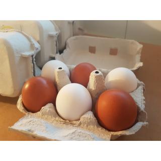 6er Pack Eier ab 53g